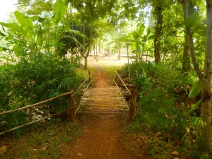 The path to the boys dorm where we are creating the mural crosses a small bridge.
